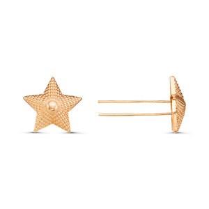 Звезды на погоны - фото 5334